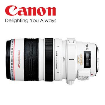 CANON EF 28-300mm望遠變焦單眼相機鏡頭
