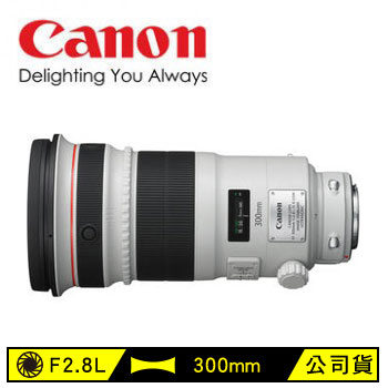 Canon EF 300mm單眼相機鏡頭(EF 300mm F2.8L IS II USM)