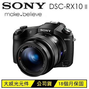 SONY RX10M2類單眼相機-黑(DSC-RX10M2)