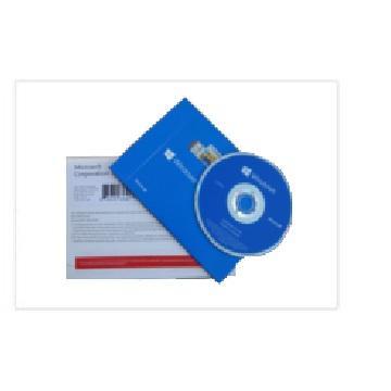 Windows 10 中文專業隨機版 32Bit DVD
