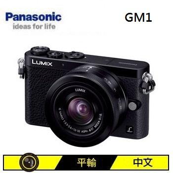 Panasonic GM1 可交換式鏡頭相機KIT-黑(12-32mm (中文平輸))