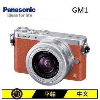 Panasonic GM1 可交換式鏡頭相機KIT-橘(12-32mm (中文平輸))