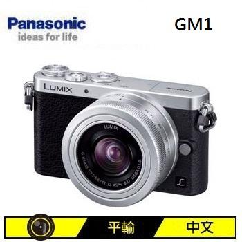 Panasonic GM1 可交換式鏡頭相機KIT-銀(12-32mm (中文平輸))