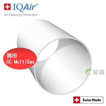 IQAir GC 後置濾網(GC Post Filter Sleeve)