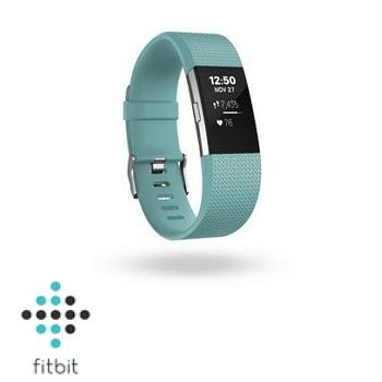 【S】Fitbit Charge 2 心率監測手環-湖水綠