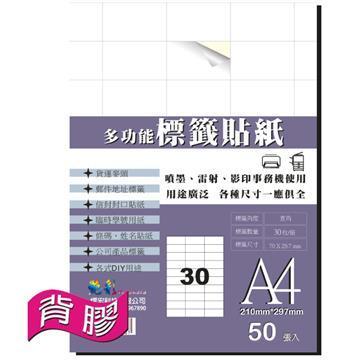艳彩3合1多功能自黏标签贴纸30格/50张/包(LAB-30)
