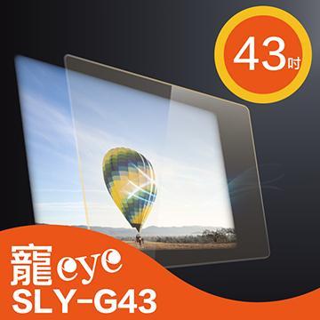 寵愛43型抗藍光護目鏡(SLY-G43)