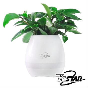 T.C.STAR智慧花盆藍牙揚聲器
